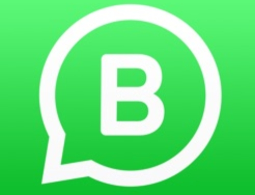 WhatsApp sul sito WEB?